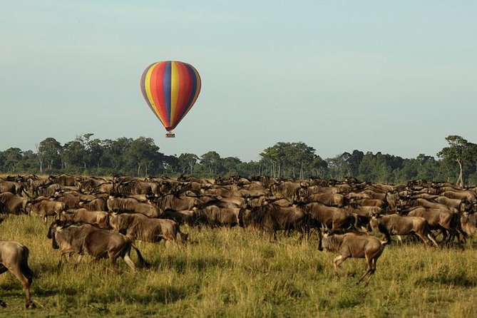 3-days Serengeti Balloon flight experience