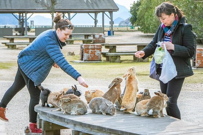 Private Tour - Refreshing Trip: Welcome to a Dream Island Full of Rabbits!