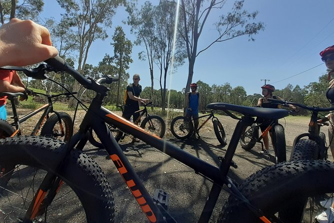 Noosa Hinterland Scenic FAT Bike Tour