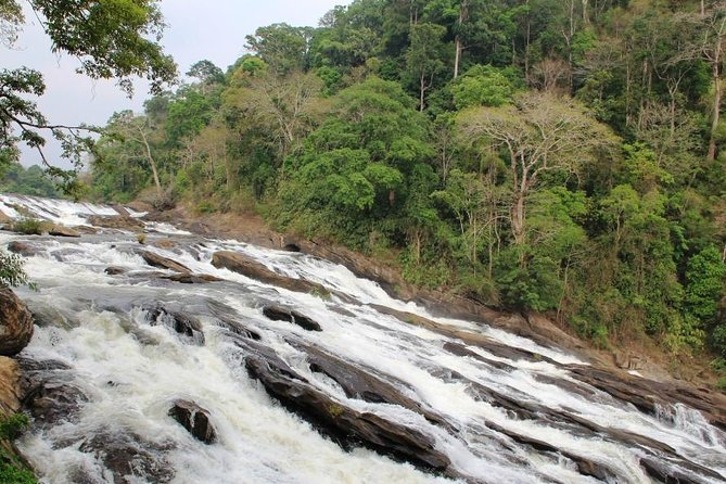 Athirappally & Vazhachal Waterfall Tour with Lunch