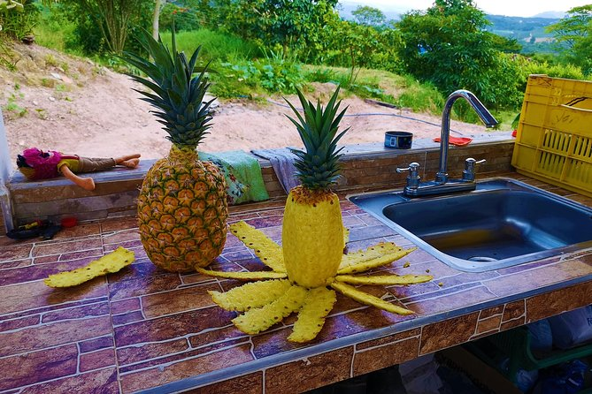 Private Tour - Pineapple Tour (Cultivations) photo 6
