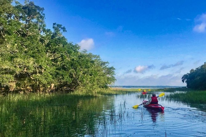 Guided Kayak Eco Tour from the Port Royal Sound Foundation Maritime Center