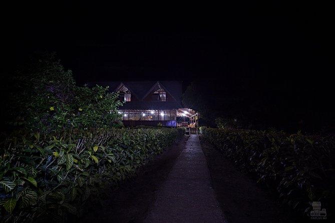 Sandoval Lake + Chuncho Macaw Collpa - 5 Days / 4 Nights
