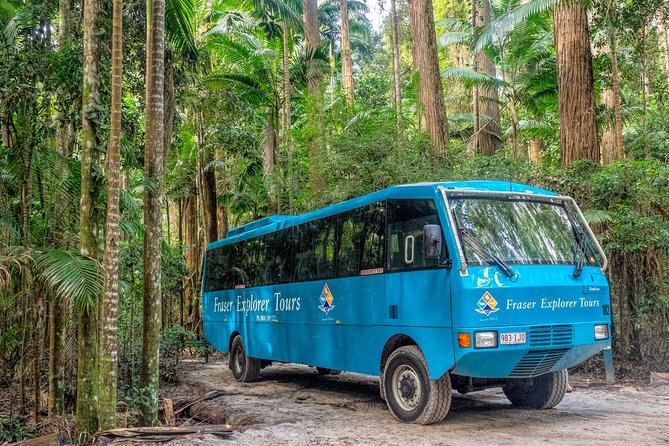 All-Inclusive Fraser Island 4WD Day Tour from Hervey Bay or Rainbow Beach, Fraser Island, AUSTRALIA
