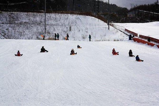 Alpensia Ski Resort Day Trip from Seoul