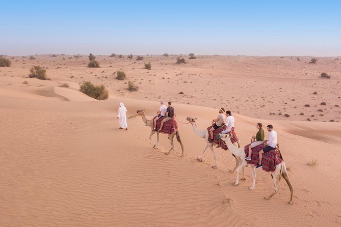 Camel Desert Safari with Traditional Dinner & Heritage Activities from Dubai