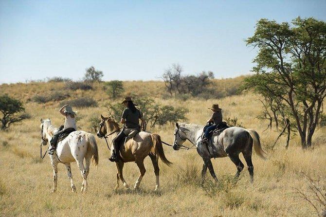 Horseriding Safari Day Tour from Johannesburg