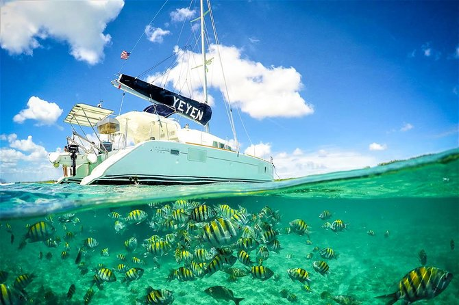 4-Hour Private 44' Large Luxury Catamaran Tour to Paamul Reef w/Food & Open Bar