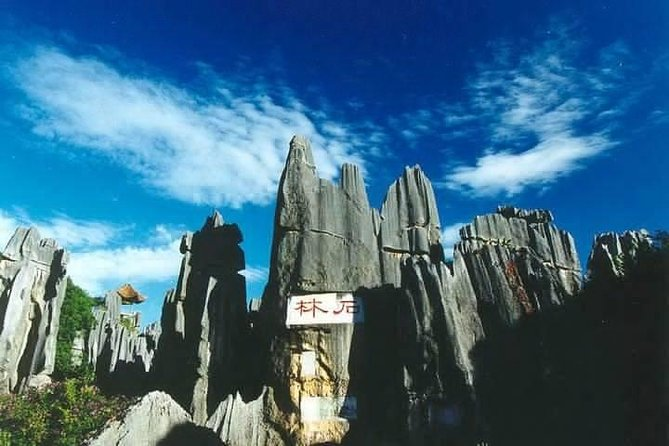 Private car/van service to Kunming Stone forest day tour no guide