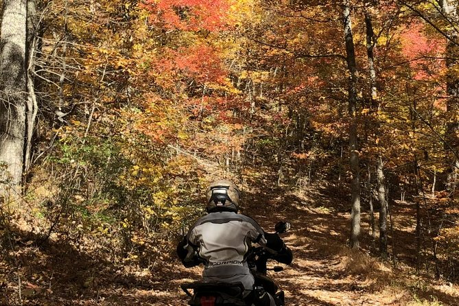 Scenic Guided Motorcycle Tours by MotoPlaN8 Handlebars