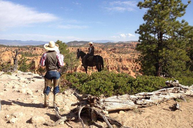 Paardrijervaring door Red Canyon met een gids