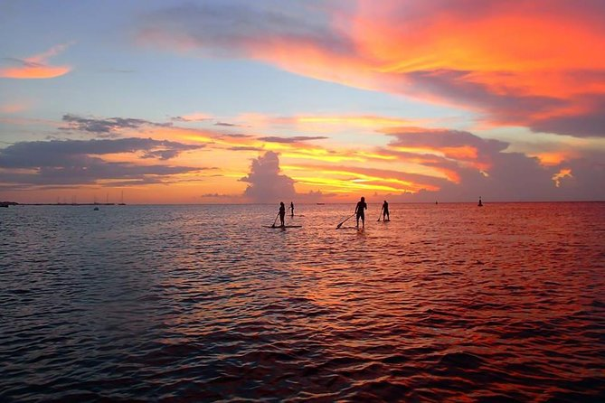 Beautiful Sunset Paddleboard in Cozumel