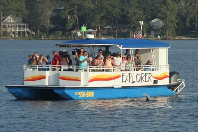 2-Hour Dolphin and Nature Eco Tour from Orange Beach