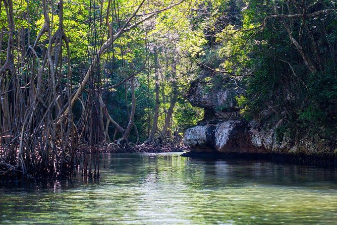 Full-Day at Los Haitises National Park