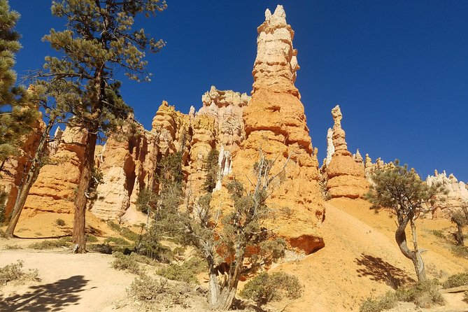 Zion and Bryce Canyon Small Group Tour from Las Vegas