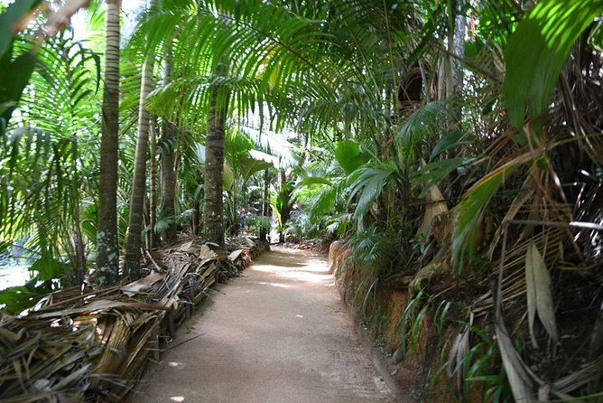 Palms and Pearls Full Day Tour