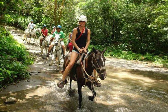 Buena Vista Mega Combo Tours Horseback Riding
