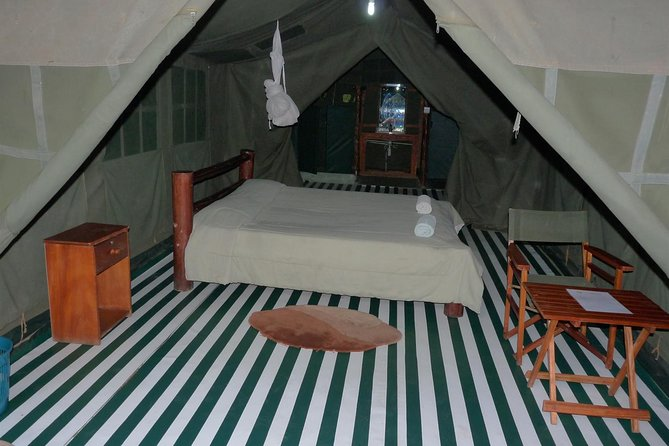4 Days Wildlife Lodge Safari Tour in Kenya photo 1