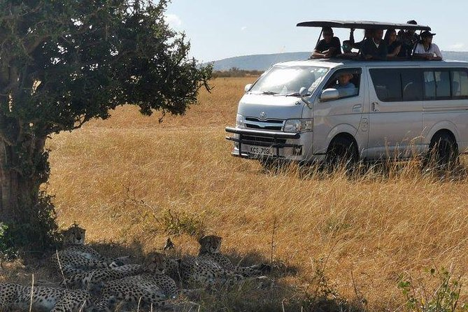 7 day Amboseli, Naivasha, Maasai Masai Mara and Lake Nakuru