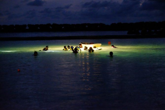Night Snorkeling Experience in Mirissa