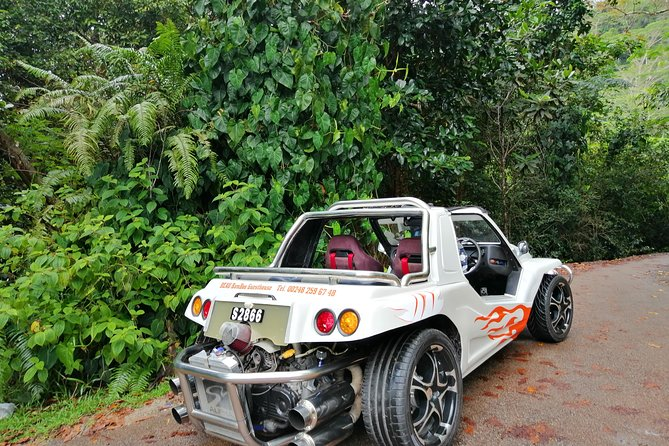 Island tour with the beach buggy
