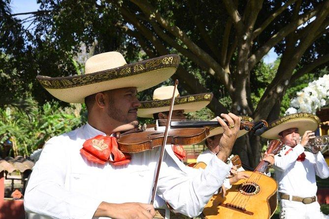 """""""Fiesta in El Rancho"""" (Mexican party)"""