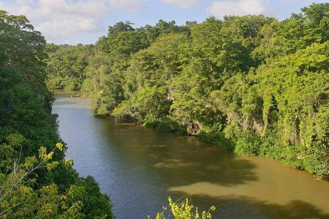 Boca De Yuma – Nature, Discovery And History Of A Population
