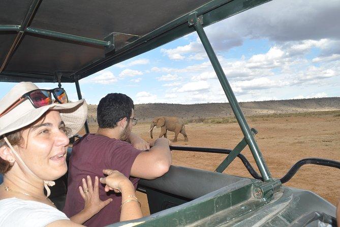 3 Days Masai Mara Adventure -- JEEP SAFARIS
