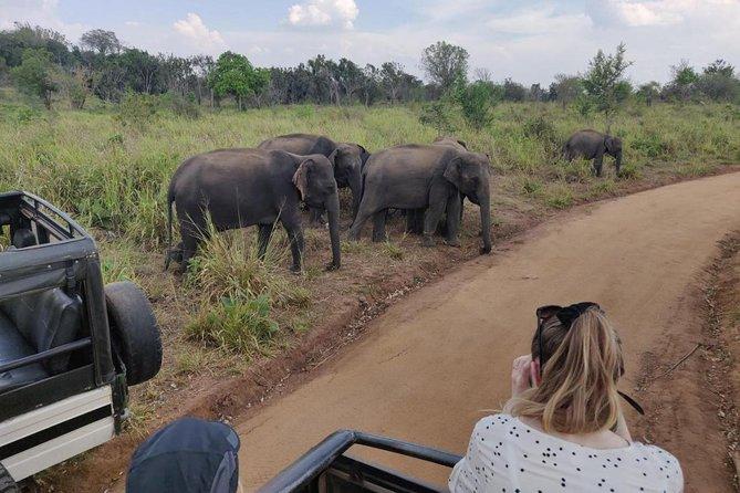 Hurulu Eco Park Private Safari