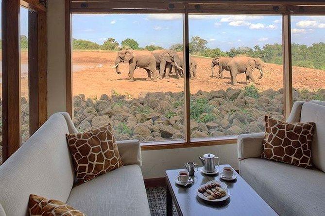 10 Days Special Kenya Safari