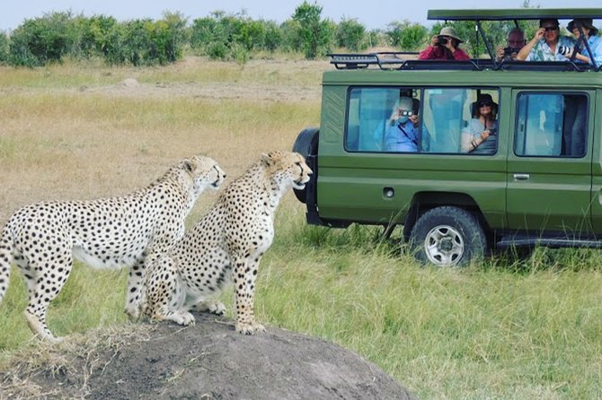 9 Days Tanzania Exhaustive Safari