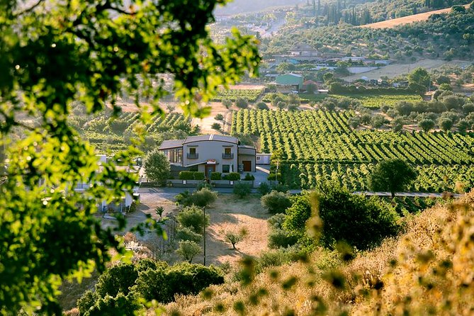 Peloponnese Wine Roads with Nafplion and Ancient Corinth Private Tour