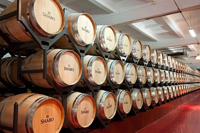 Full-Day Combo Tour from Odessa: Akkerman Fortress and Shabo Wine Center with Tasting photo 2