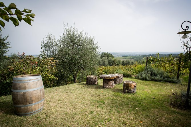 Wine Tour Experience at Agricola Tamburini