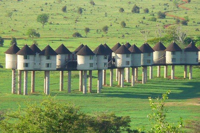 3 days safari Tsavo east and Taita hills (Saltlick lodge)