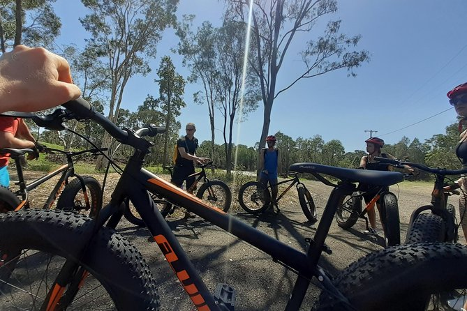 Noosa Hinterland Scenic FAT Bike & Abseil Tour