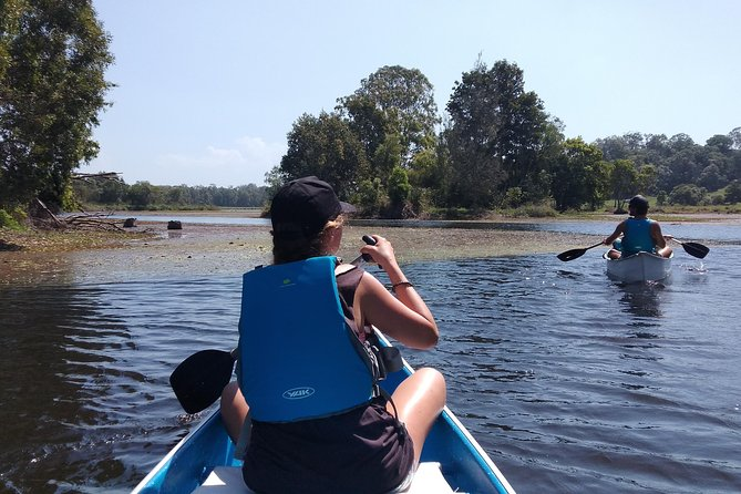 Noosa Hinterland Scenic Canoe & Abseil Tour