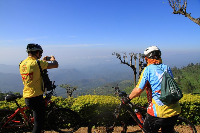Half day extreme tea country cycling quest – Dikoya