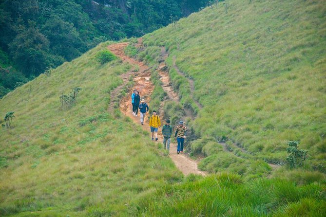 Kanneliya Forest Nature Trail in Sri Lanka - A Guided Trek photo 3