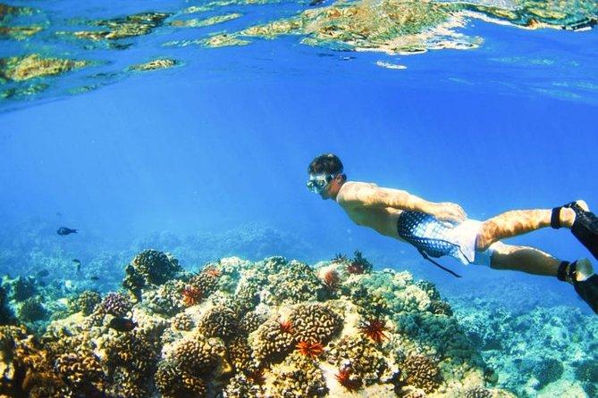 Blue Lagoon Bali Snorkeling Tour