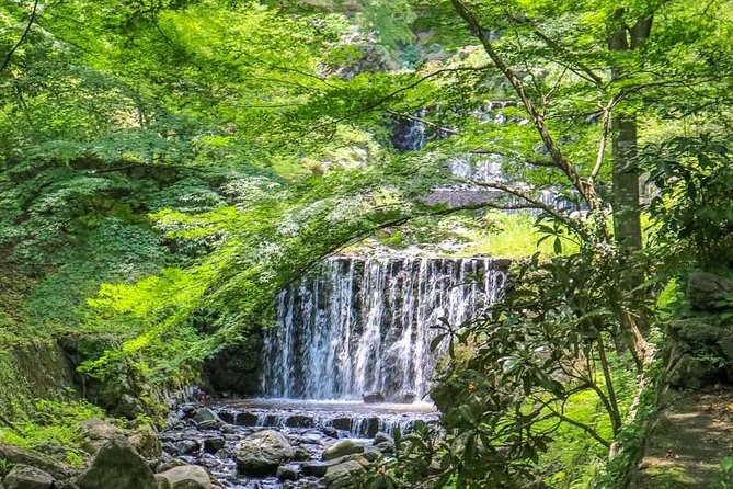 Private Tour - Hike to Yoro Falls: Japan's top Waterfall/Spring Water Site!