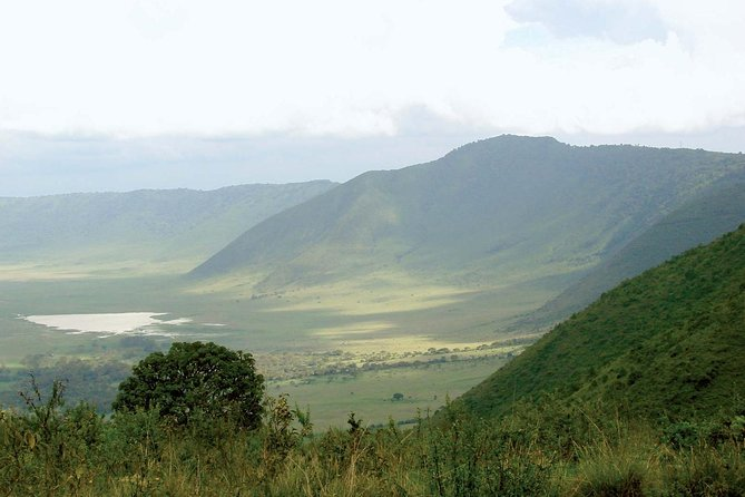 7 Days 6 Nights Walking Safari On Ngorongoro Highlands photo 6