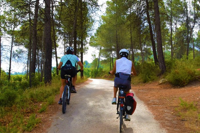 A day to discover the outskirts of Valencia with traditional bike and guide paella