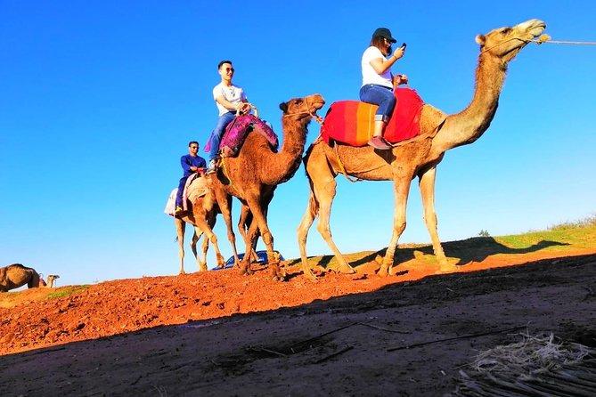 Day Trip: Waterfalls & Desert Agafay & Atlas Mountains & Camel ride
