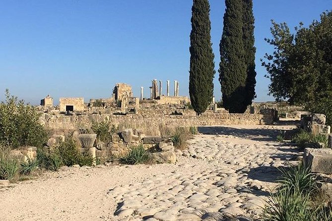 Private One day trip from Fes to Volubilis, Meknes and Moulay Idriss.