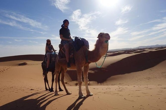 2 Nights in Merzouga Desert Camping With Camel Ride All is Included