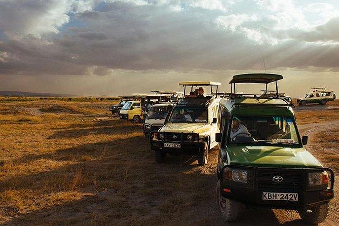 Maasai Mara Safari