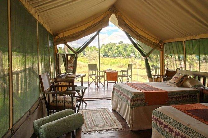 3 Days Group Safari in Maasai Mara National Reserve, Kenya
