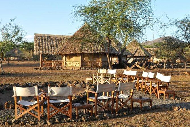 2 Days Road Safari in Tsavo West National Park, Kenya