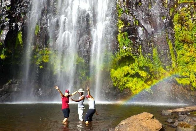 1 Day Tour to Materuni Waterfalls and Coffee Tour